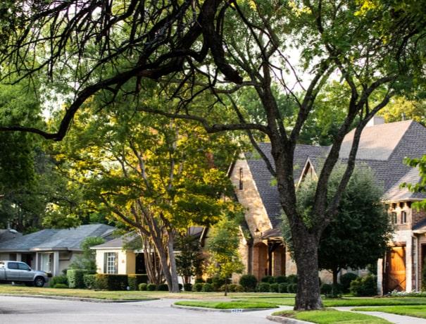 A tree-lined Avon neighborhood on a summer morning